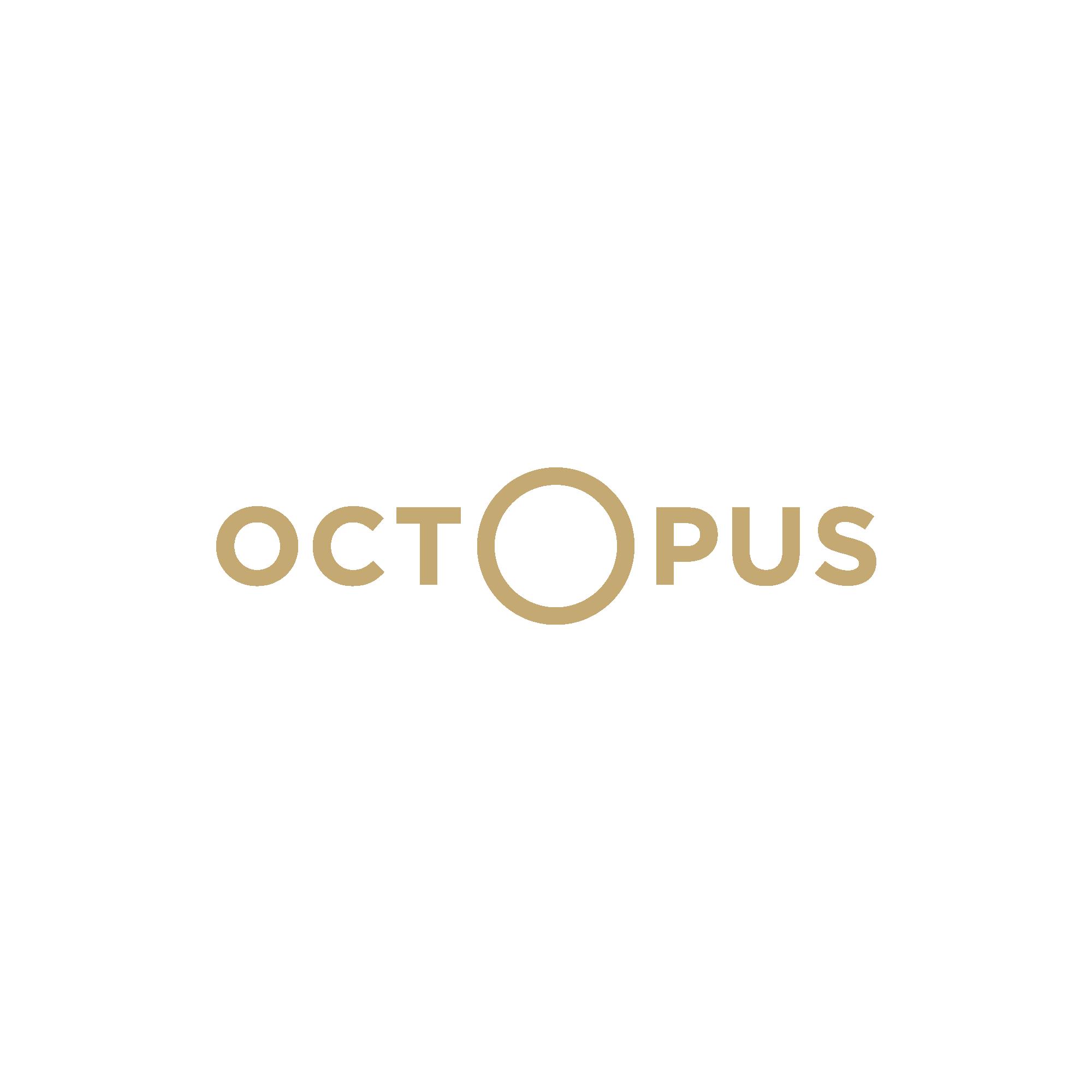 Libraire Octopus – Josselin Tourette – Identite – 2